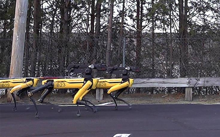 Πώς συνεργάζονται δέκα ρομπότ για να ρυμουλκήσουν ένα φορτηγό – Newsbeast